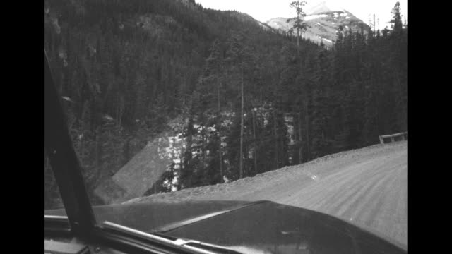 two men secure gate of truck with rope as horses stand on truck / vs pov from inside truck as it moves on road in banff national park / vs research... - ford motor company stock videos and b-roll footage