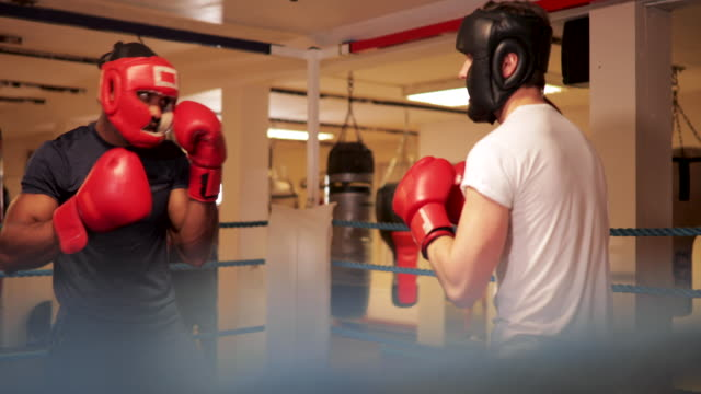 two men sparring - muay thai stock videos and b-roll footage