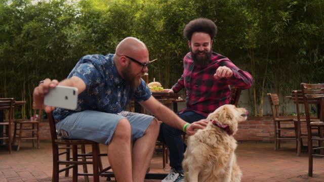 犬と一緒に自分撮りを取る二人の男 - photographing点の映像素材/bロール