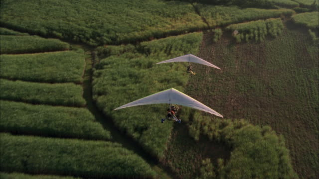two microlights flying over sugar cane fields, south africa available in hd. - glider stock videos & royalty-free footage