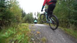 Two mountain bike riders cycling fast along a forest bike trail