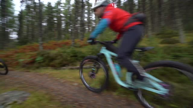 two mountain bikers cycling along a forest trail - mountain biking stock videos & royalty-free footage