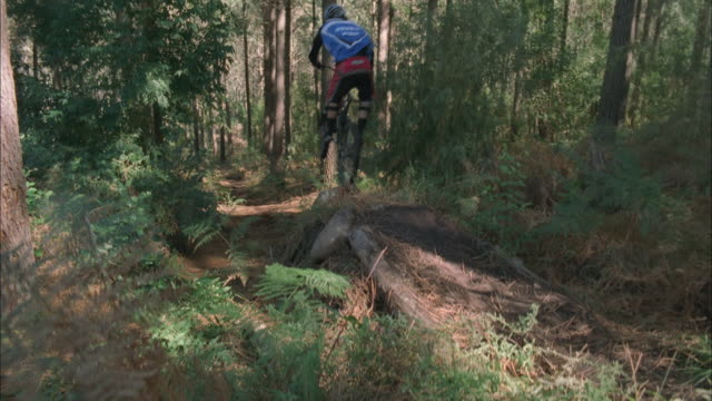 stockvideo's en b-roll-footage met two mountain bikers jump off tree stump on forest trail, south africa available in hd. - boomstronk