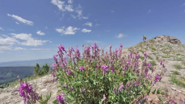 vídeos de stock e filmes b-roll de two mountain bikers ride down a rocky path at grand targhee in wyoming - enfeites para a cabeça