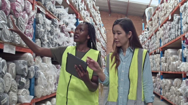 two multi-ethnic female workers checking the stock items at warehouse - trainee stock videos & royalty-free footage