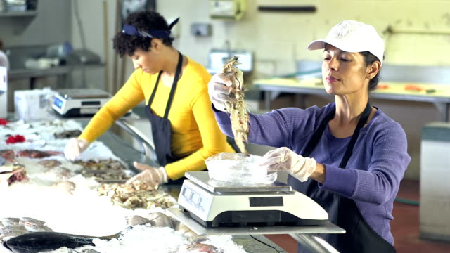 two multi-ethnic women working in seafood market - fish market stock videos and b-roll footage