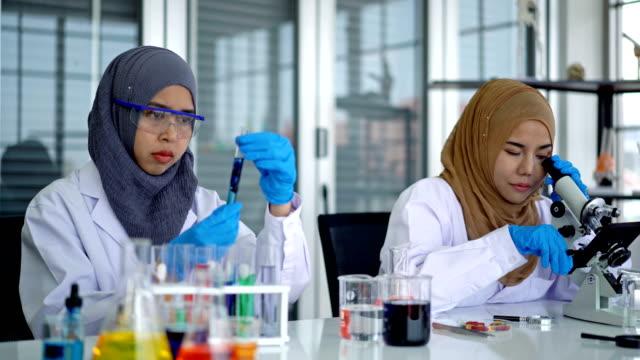 4k zwei muslimische wissenschaftlerinnen forschen im labor - ärztin stock-videos und b-roll-filmmaterial