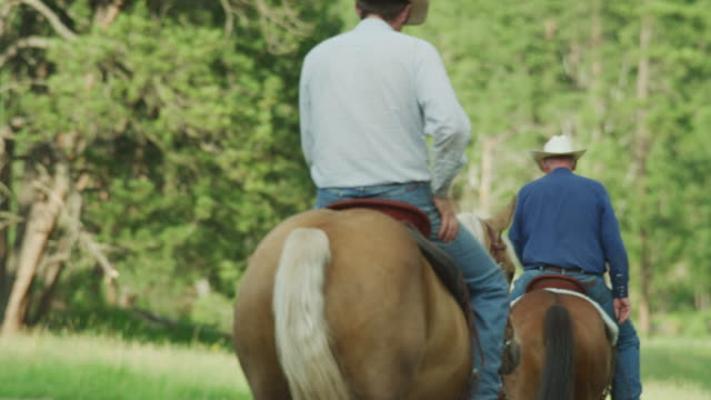 two old cowboys ride their horses down a forested trail and are joined by a woman also on horseback. - trail ride stock videos and b-roll footage