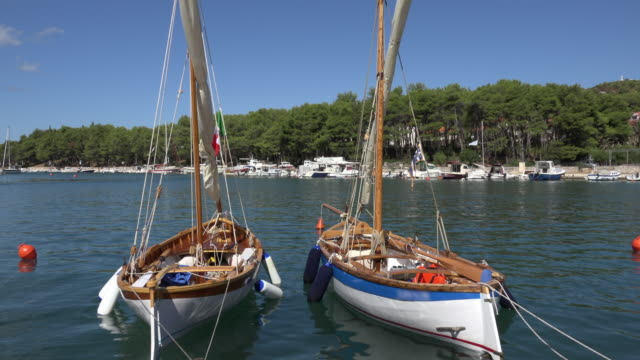 Two old sailing boats moored in port
