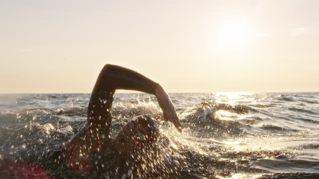 vídeos de stock e filmes b-roll de slo mo ts two open water swimmers swimming forward crawl on a sunny day at sea - membro humano
