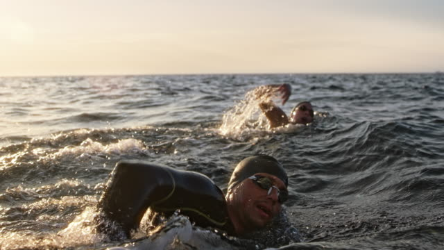 vídeos de stock e filmes b-roll de slo mo ts two open water swimmers swimming front crawl at sea in sunshine - competência