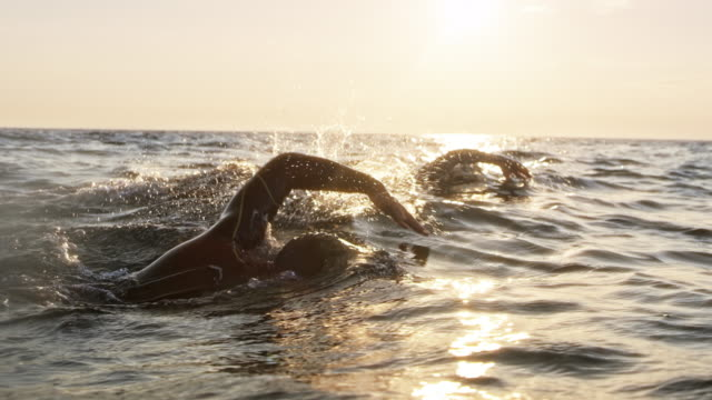 vídeos de stock e filmes b-roll de slo mo ts two open water swimmers swimming in sunshine - membro humano