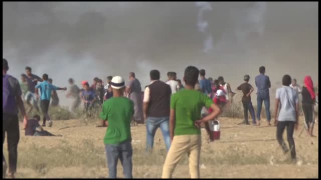 "two palestinians were killed on friday by israeli forces near the gazaisrael buffer zone according to gaza's health ministry""two palestinians were... - historical palestine stock videos & royalty-free footage"