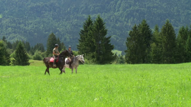 hd: two people enjoying horseback riding - recreational horseback riding stock videos and b-roll footage