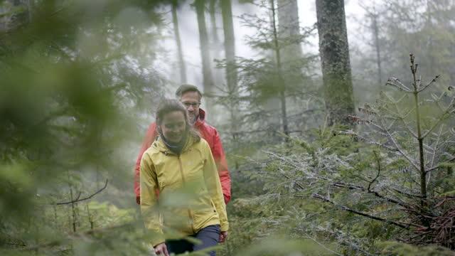 zwei personen wandern an einem regnerischen tag im wald - 40 44 jahre stock-videos und b-roll-filmmaterial