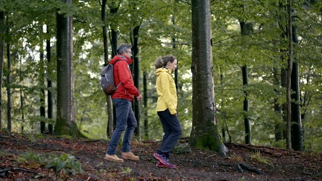 vidéos et rushes de deux personnes marchant dans les bois un jour pluvieux - 40 44 ans