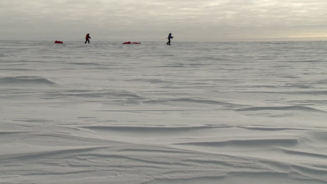 ws of two people on skis in distance pulling pack sleds across ice / south pole, antarctica - antarctica people stock videos & royalty-free footage