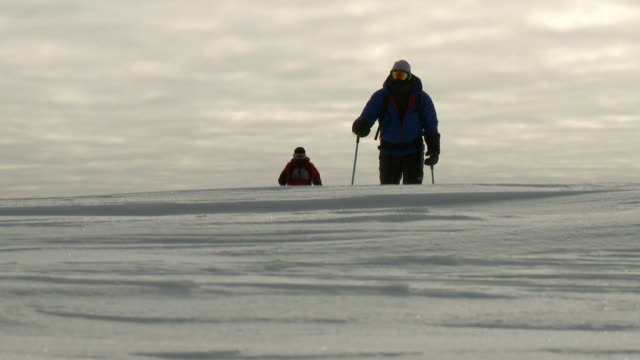 ms la of two people on skis pulling pack sleds across ice coming over brow of hill / south pole, antarctica - antarctica people stock videos & royalty-free footage