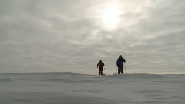 ws of two people on skis pulling pack sleds across ice with weak sun visible behind clouds / south pole, antarctica - south pole stock videos and b-roll footage
