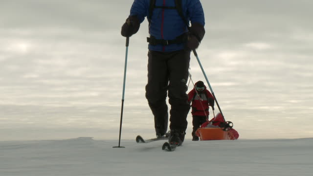 ms two people on skis pulling pack sleds across snowy windswept landscape / south pole, antarctica - antarctica people stock videos & royalty-free footage