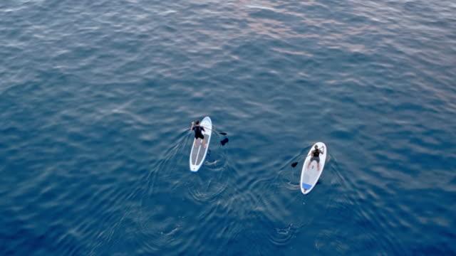 vídeos de stock, filmes e b-roll de aerial duas pessoas remando sua placas de remo de pé sobre uma superfície de mar calmo - diving suit