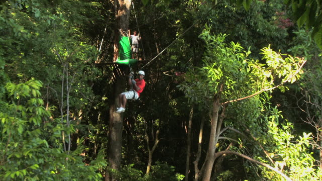 two people passing each other on zip lines through the trees