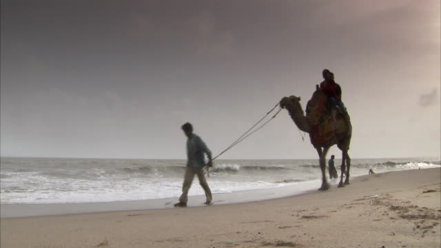 Two people ride a camel guided on a rope along a beach. Available in HD.