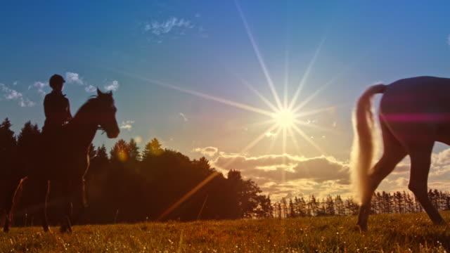 vídeos de stock, filmes e b-roll de ds dois povos que montam cavalos no por do sol - montar um animal