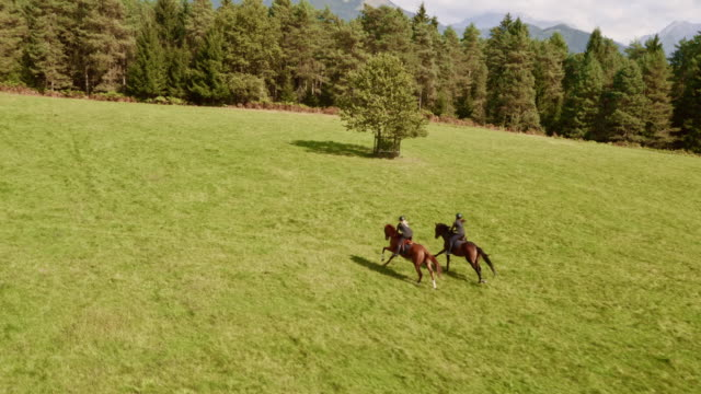 aerial two people riding running horses in the meadow - horseback riding stock videos & royalty-free footage
