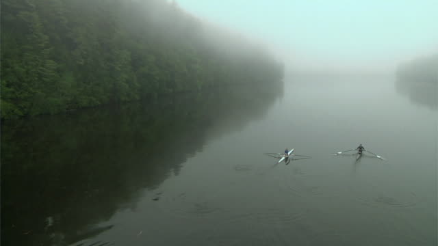 ha ws two people rowing past into the distance in single sculls on the connecticut river at dawn/ hanover, new hampshire, usa - sculling stock videos & royalty-free footage