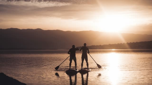 vídeos de stock e filmes b-roll de two people stand up paddle boarding - remar com remo
