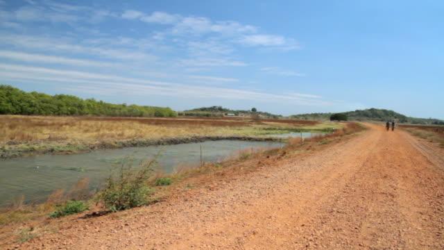 ms pan two people walking towards on field / northern territory, australia - wiese stock videos & royalty-free footage