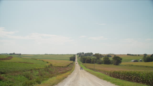 Two pickup trucks drive on a long ribbon of a gravel, rural country road flanked by agricultural farms and fields of corn against a blue sky.