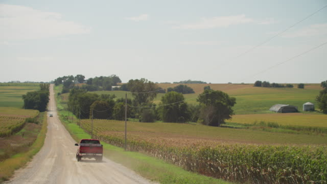 two pickup trucks drive on a long ribbon of a gravel, rural country road flanked by agricultural farms and fields of corn against a blue sky. - トラック点の映像素材/bロール