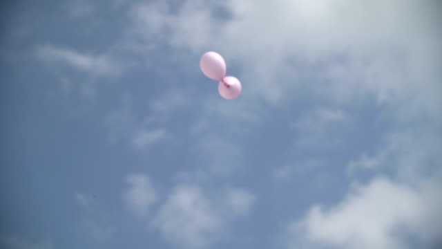 WIDE SHOT LOW ANGLE Two pink balloons flying against sky