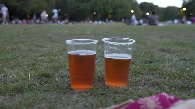 two pints on the grass at dusk - pint glass stock videos & royalty-free footage