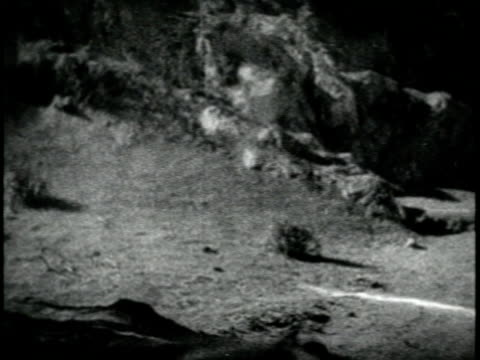 1926 FILM MONTAGE MS Two pirates (Douglas Fairbanks Sr. in black) sword fighting / 'The Black Pirate'