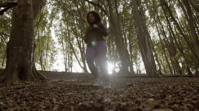 two plus size females running exercising outdoors in woodland, obese black women jogging sports training body positive - woodland stock videos & royalty-free footage