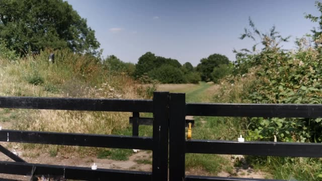 two police officers arrested after allegedly sharing photo of murdered sisters england north west london brent fryent country park ext various shots... - crime and murder stock-videos und b-roll-filmmaterial