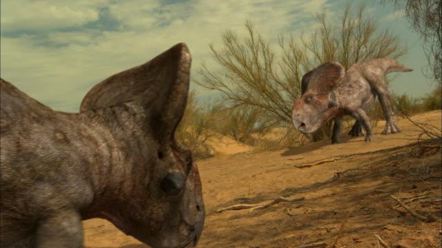 CGI, MS, Two Protoceratopses on sand dune