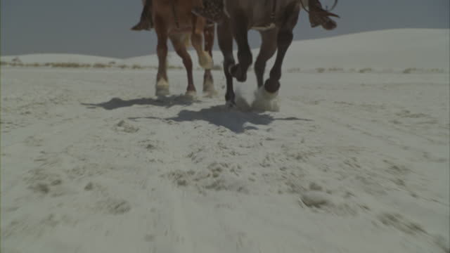 vídeos de stock, filmes e b-roll de two roman soldiers riding their horses across a snowy desert. - roman soldier