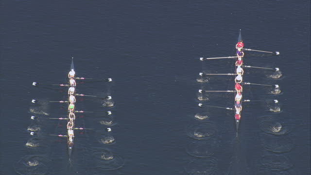 AERIAL Two rowing teams of eight practicing together in calm water / Boston, Massachusetts, United States