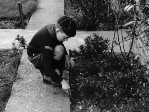 two scouts weed a front garden of a house during bob a job week - weeding stock videos & royalty-free footage