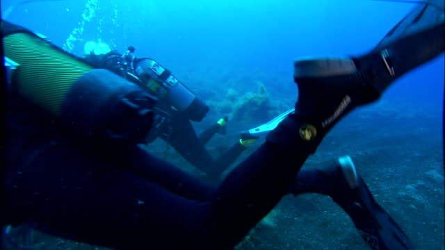 two scuba divers swim over a volcanic rock in the mediterranean sea. available in hd. - diving flipper stock videos & royalty-free footage