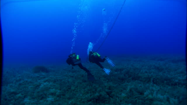 Two scuba divers swim over the ocean floor in the Mediterranean Sea. Available in HD.