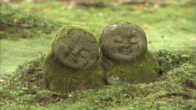 two seated buddhist stone statues covered in moss - human representation stock videos and b-roll footage