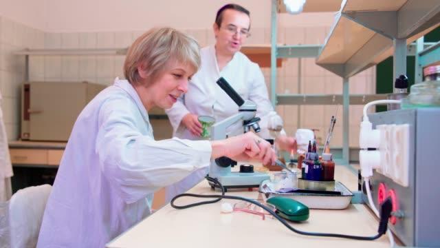 vídeos y material grabado en eventos de stock de dos seniors 50 años mujeres, científicos, trabajando junto con el cultivo bacteriano y microscopio en el laboratorio de microbiología de la universidad - 50 54 years