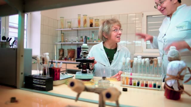 Two senior 50-years-old women, scientists, working together with the microscope and bacterial culture in the college microbiology lab