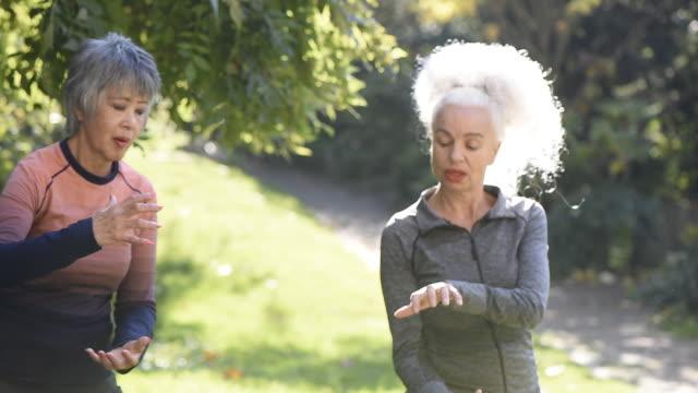 stockvideo's en b-roll-footage met two senior woman in park doing exercise - haar naar achteren