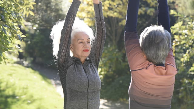 two senior woman in park doing exercise - good posture stock videos & royalty-free footage